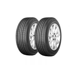 2 Neumáticos Bridgestone Ecopia H/L 422 PLUS 225/55 R19 99H